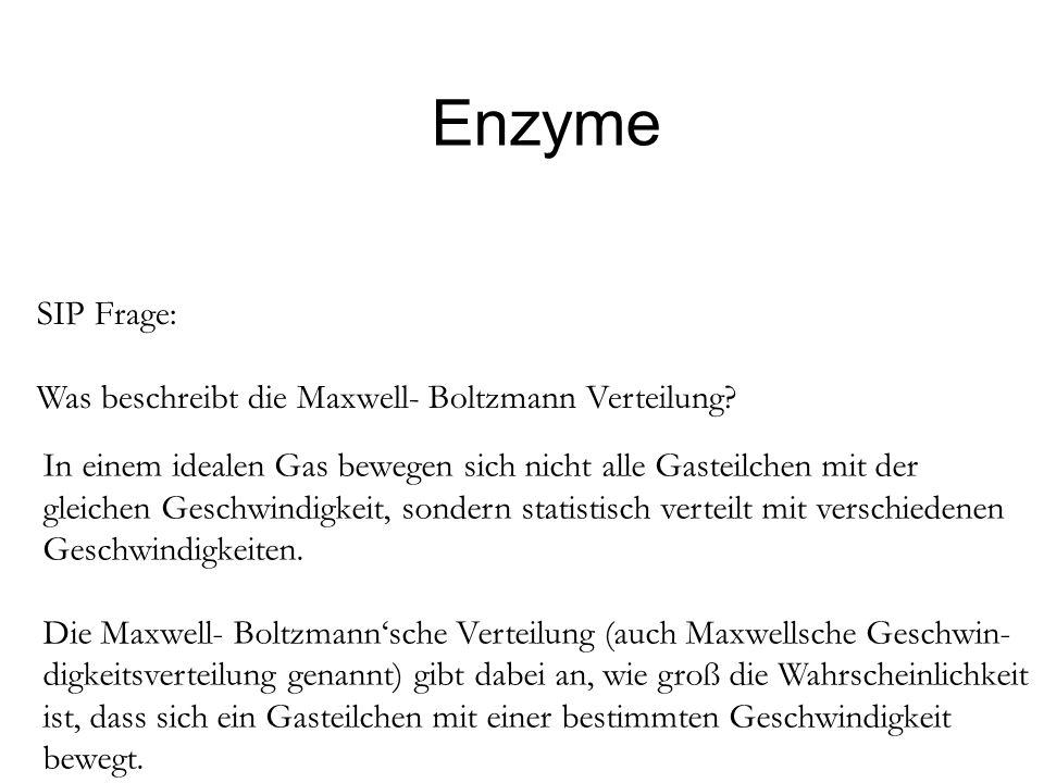 Enzyme SIP Frage: Was beschreibt die Maxwell- Boltzmann Verteilung? In einem idealen Gas bewegen sich nicht alle Gasteilchen mit der gleichen Geschwin
