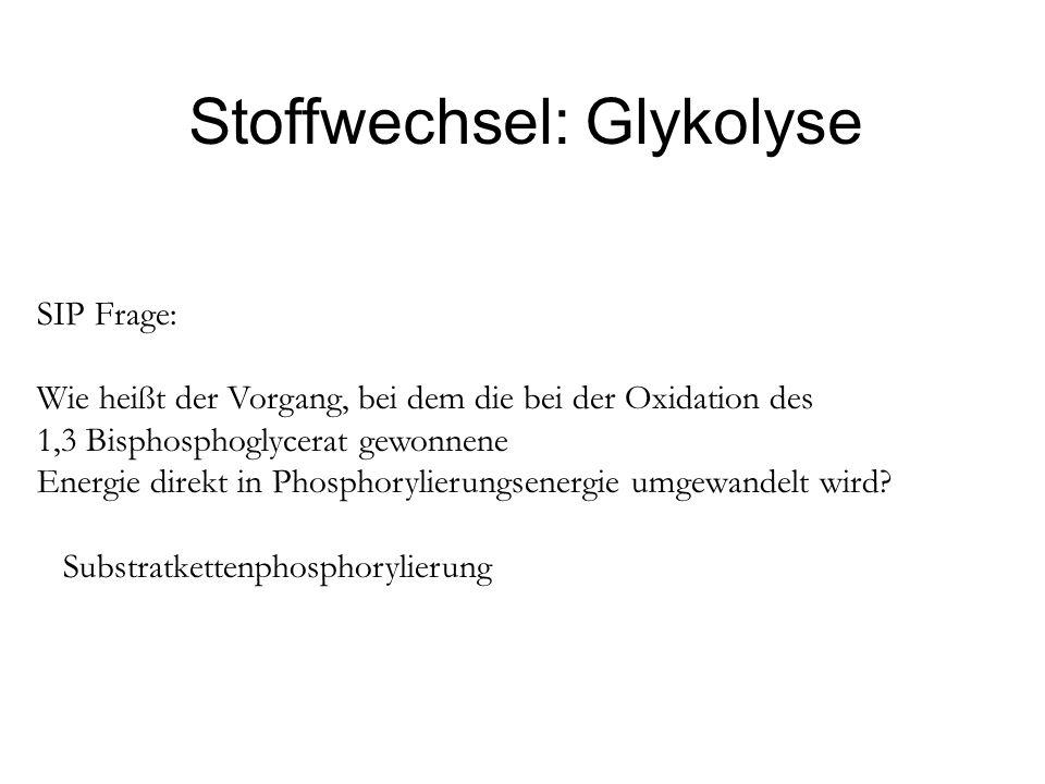 Stoffwechsel: Glykolyse SIP Frage: Wie heißt der Vorgang, bei dem die bei der Oxidation des 1,3 Bisphosphoglycerat gewonnene Energie direkt in Phospho