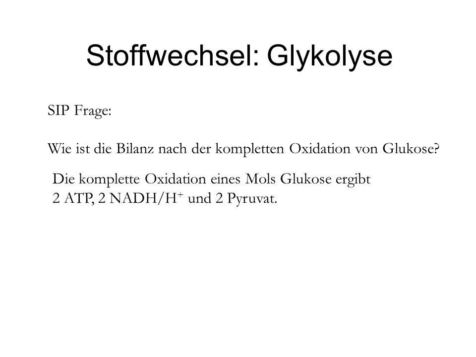 Stoffwechsel: Glykolyse SIP Frage: Wie ist die Bilanz nach der kompletten Oxidation von Glukose? Die komplette Oxidation eines Mols Glukose ergibt 2 A