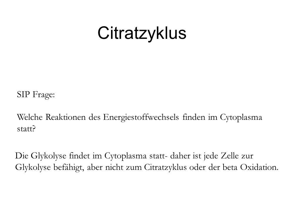 Citratzyklus SIP Frage: Welche Reaktionen des Energiestoffwechsels finden im Cytoplasma statt? Die Glykolyse findet im Cytoplasma statt- daher ist jed