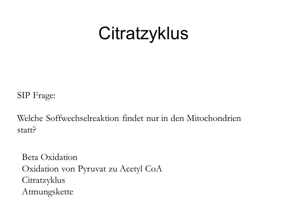 Citratzyklus SIP Frage: Welche Soffwechselreaktion findet nur in den Mitochondrien statt? Beta Oxidation Oxidation von Pyruvat zu Acetyl CoA Citratzyk