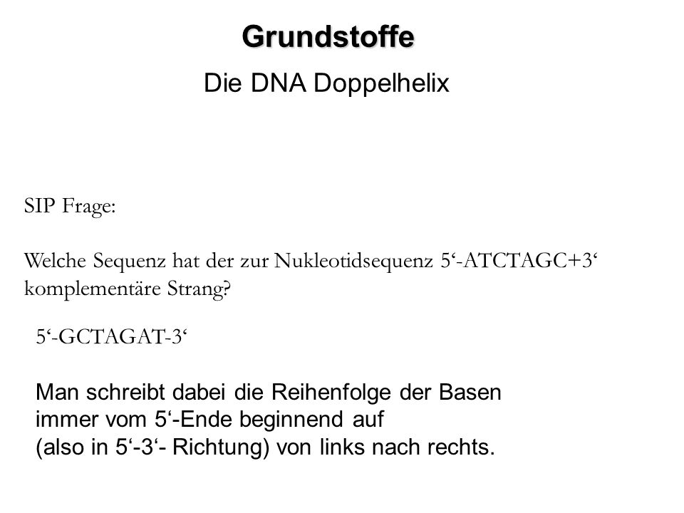 Grundstoffe Die DNA Doppelhelix SIP Frage: Welche Sequenz hat der zur Nukleotidsequenz 5-ATCTAGC+3 komplementäre Strang? 5-GCTAGAT-3 Man schreibt dabe