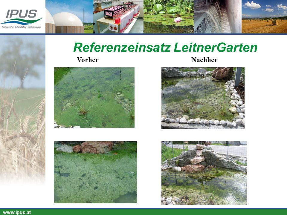 IPUS – für Ihren Erfolg und unsere Umwelt www.ipus.at Referenzeinsatz LeitnerGarten VorherNachher