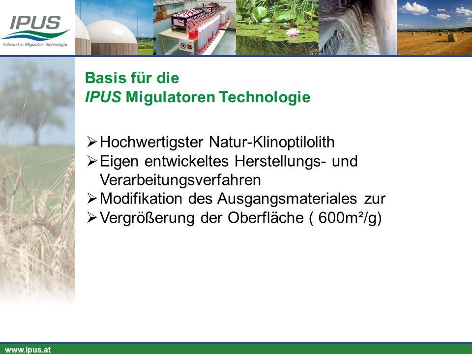 IPUS – für Ihren Erfolg und unsere Umwelt www.ipus.at Hochwertigster Natur-Klinoptilolith Eigen entwickeltes Herstellungs- und Verarbeitungsverfahren
