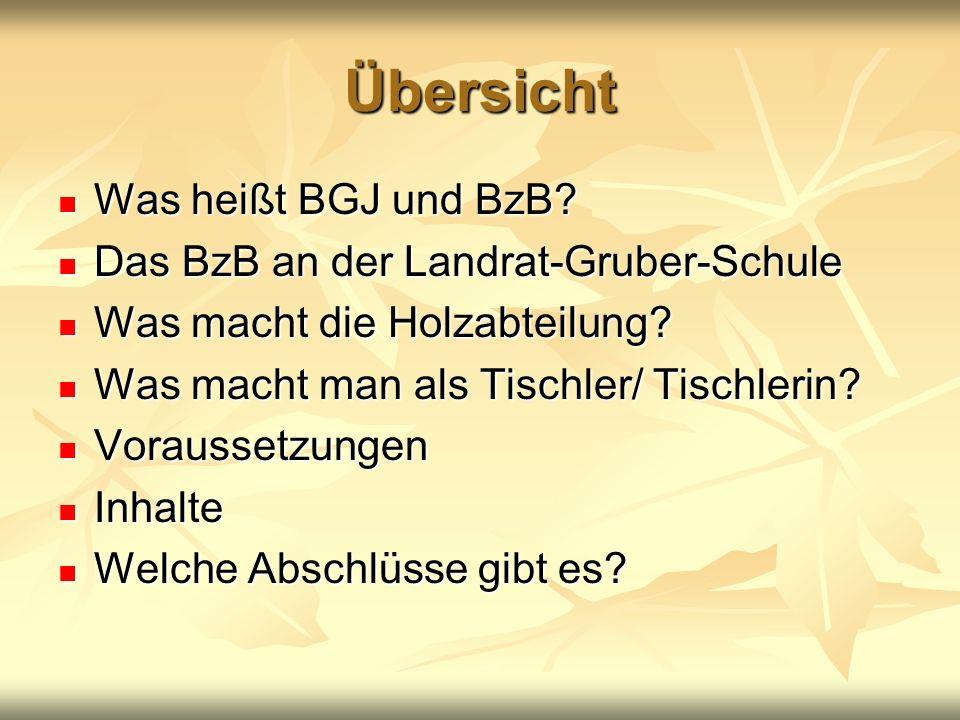 Übersicht Was heißt BGJ und BzB? Was heißt BGJ und BzB? Das BzB an der Landrat-Gruber-Schule Das BzB an der Landrat-Gruber-Schule Was macht die Holzab