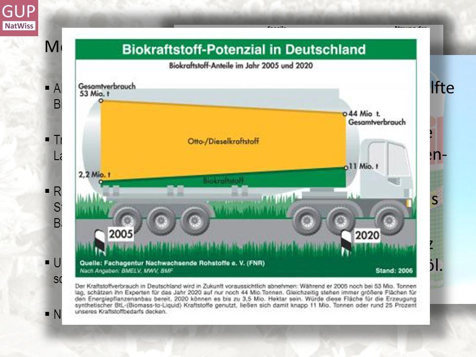 Motive für die Nutzung nachwachsender Rohstoffe Aktuell: CO 2 -Bilanz / Treibhauseffekt / Klimaveränderungen -> Energiepflanzen / Biosprit Traditionel