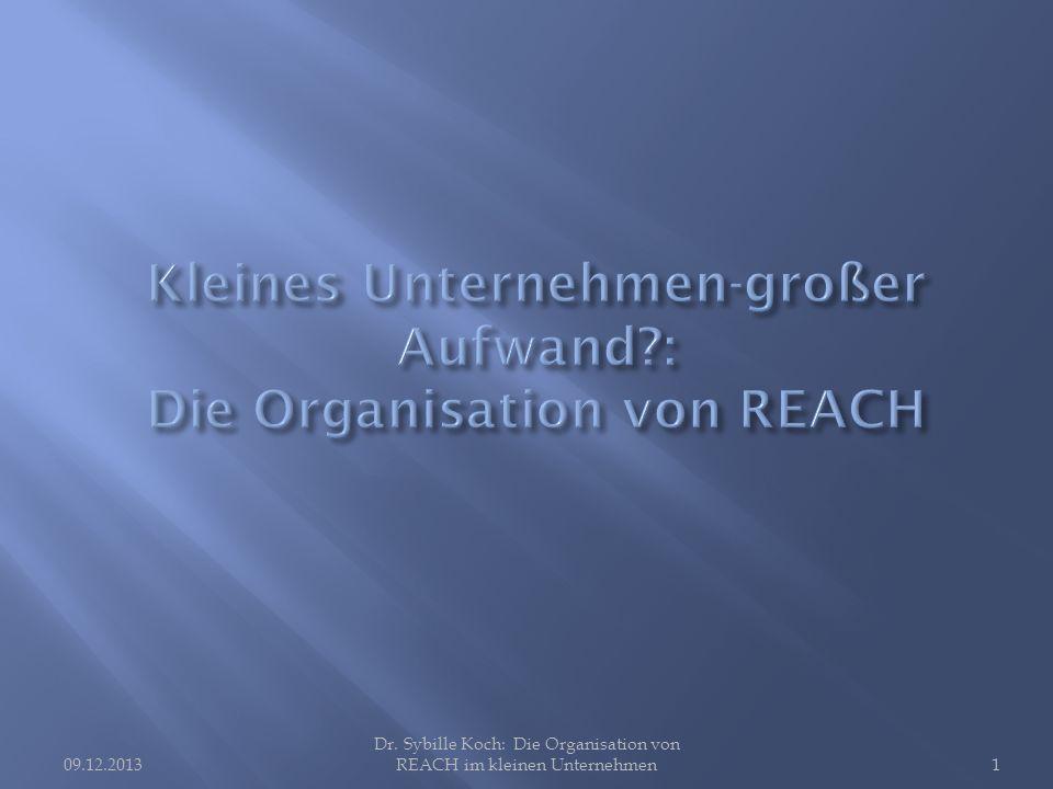 09.12.2013 Dr. Sybille Koch: Die Organisation von REACH im kleinen Unternehmen1