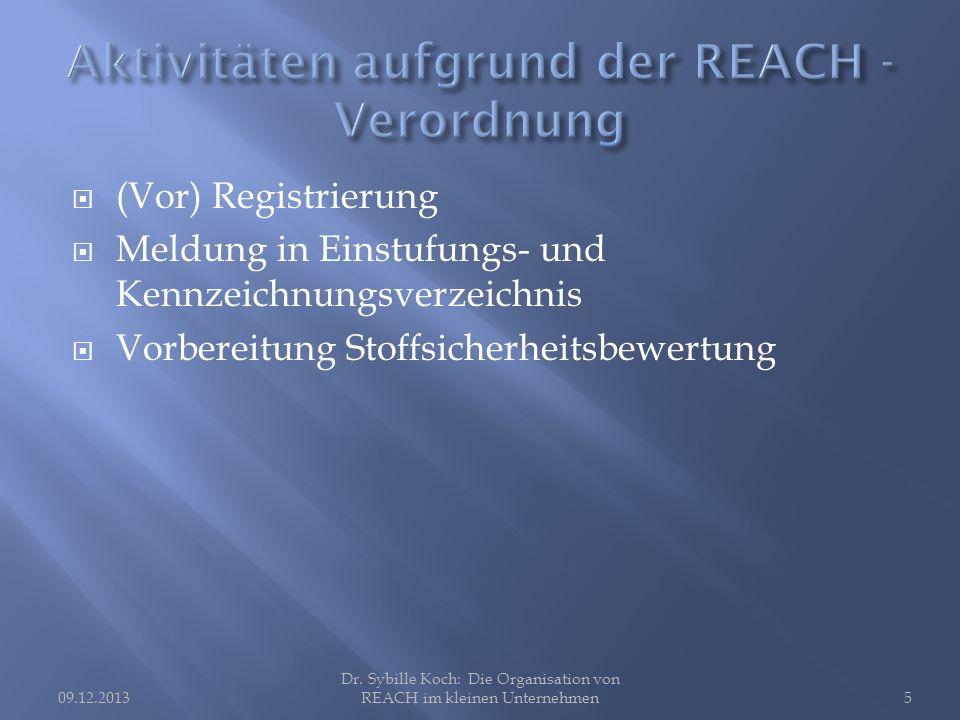 (Vor) Registrierung Meldung in Einstufungs- und Kennzeichnungsverzeichnis Vorbereitung Stoffsicherheitsbewertung Dr.