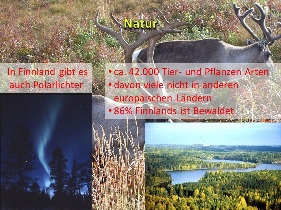 ca. 42.000 Tier- und Pflanzen Arten davon viele nicht in anderen europäischen Ländern 86% Finnlands ist Bewaldet In Finnland gibt es auch Polarlichter