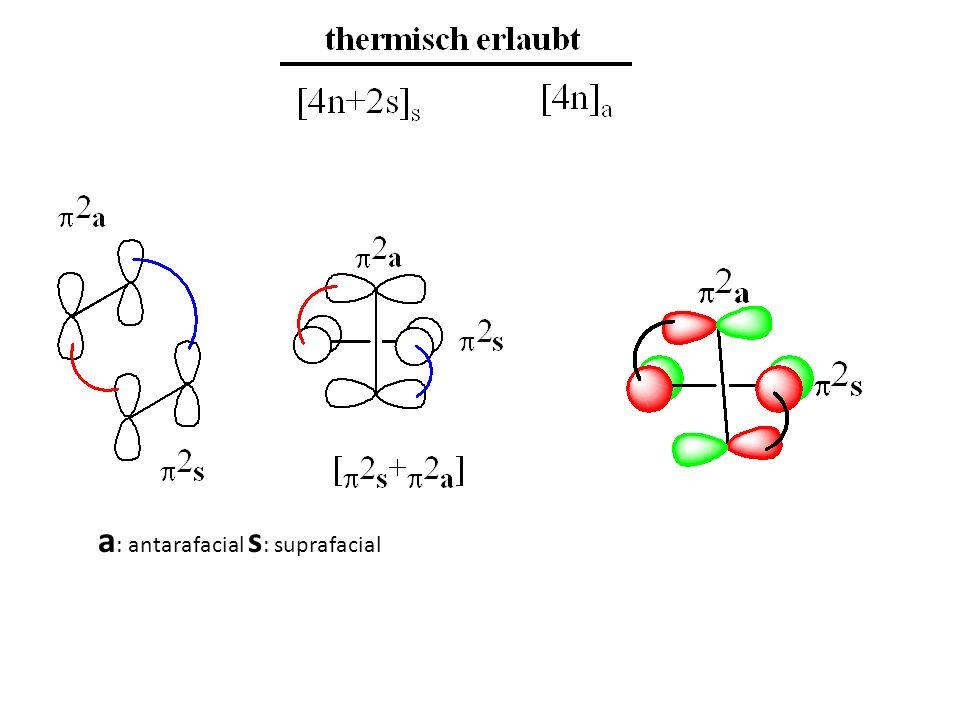 a : antarafacial s : suprafacial