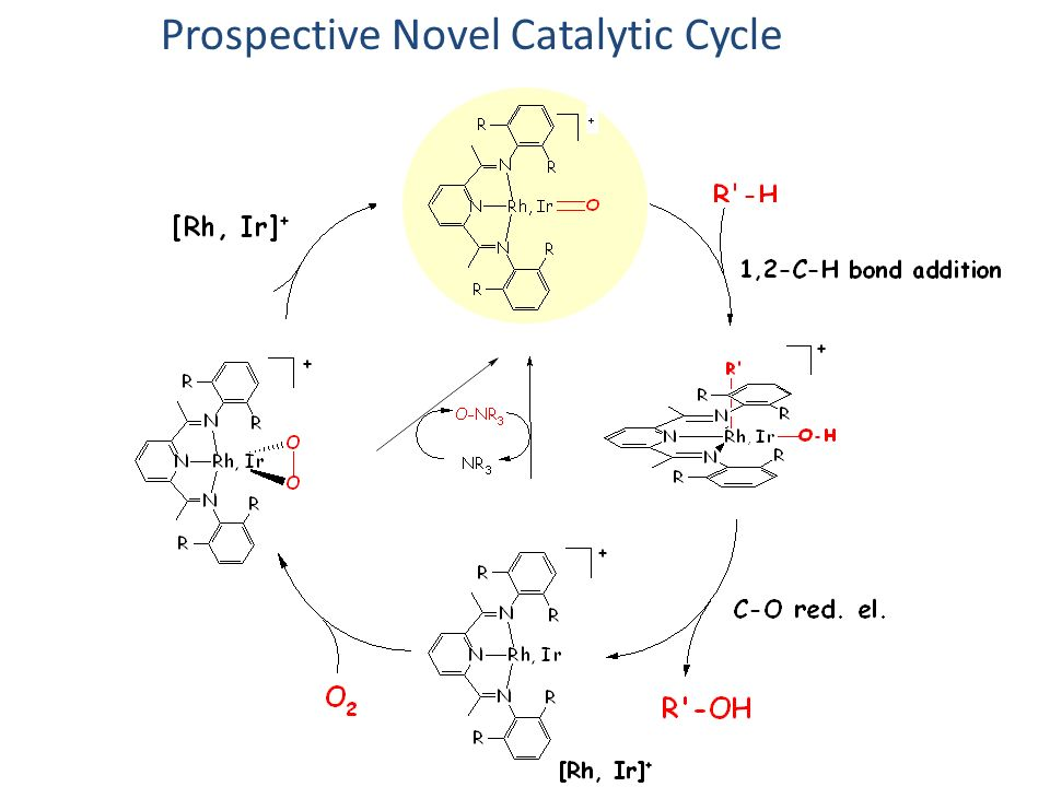 Our Claim to Fame ? or Failure?Prospective Novel Catalytic Cycle