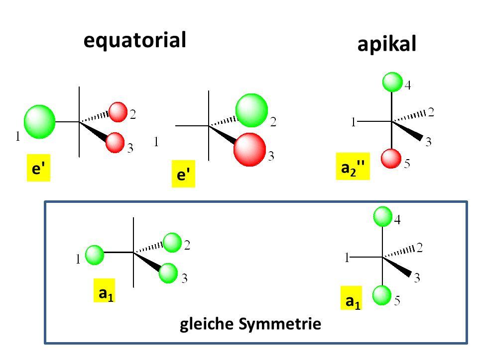 a1a1 e' equatorial apikal a1a1 a 2 '' gleiche Symmetrie