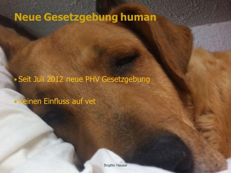 www.ages.atBrigitte Hauser Neue Gesetzgebung human Seit Juli 2012 neue PHV Gesetzgebung Keinen Einfluss auf vet 3