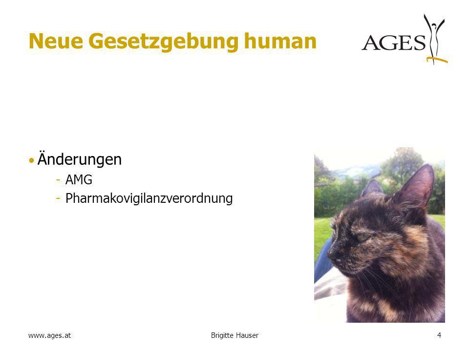 www.ages.at Behandlungsdauer für lebenslang (oder sehr lange) zu verabreichende Medikamente PSUR 45Brigitte Hauser