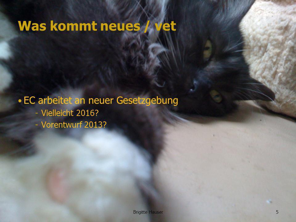www.ages.at Was kommt neues / vet Wahrscheinlich viele Gemeinsamkeiten mit humaner Gesetzgebung 6Brigitte Hauser