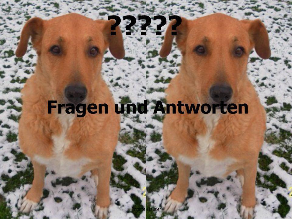 www.ages.at Fragen und Antworten 7Brigitte Hauser
