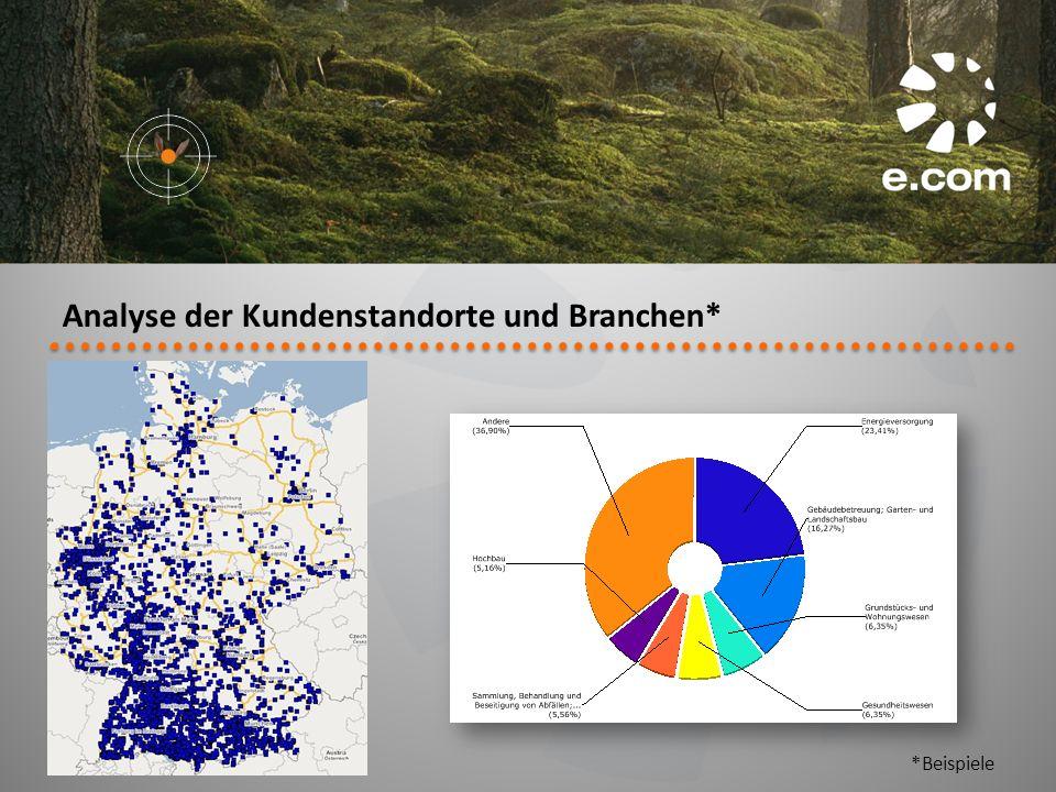 Analyse der Kundenstandorte und Branchen* *Beispiele