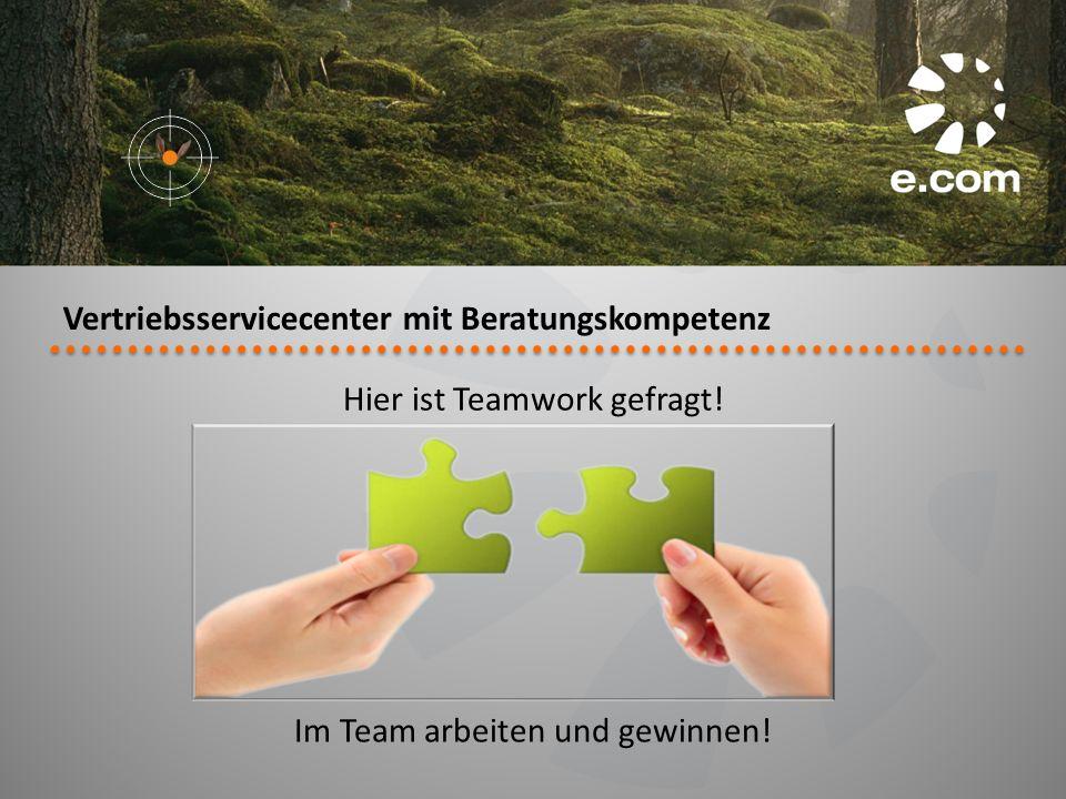 Vertriebsservicecenter mit Beratungskompetenz Hier ist Teamwork gefragt! Im Team arbeiten und gewinnen!