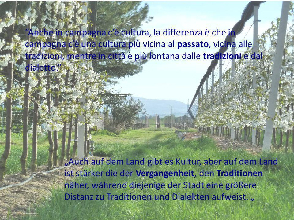 Anche in campagna cè cultura, la differenza è che in campagna cè una cultura più vicina al passato, vicina alle tradizioni, mentre in città è più lontana dalle tradizioni e dal dialetto.