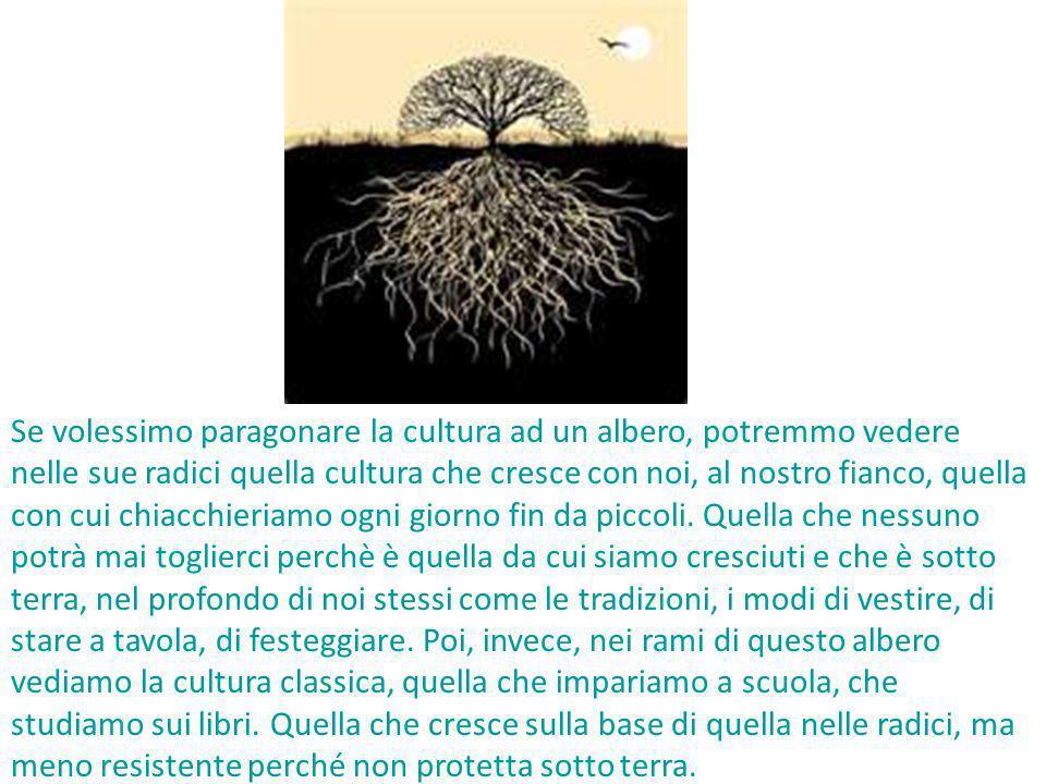 Se volessimo paragonare la cultura ad un albero, potremmo vedere nelle sue radici quella cultura che cresce con noi, al nostro fianco, quella con cui chiacchieriamo ogni giorno fin da piccoli.