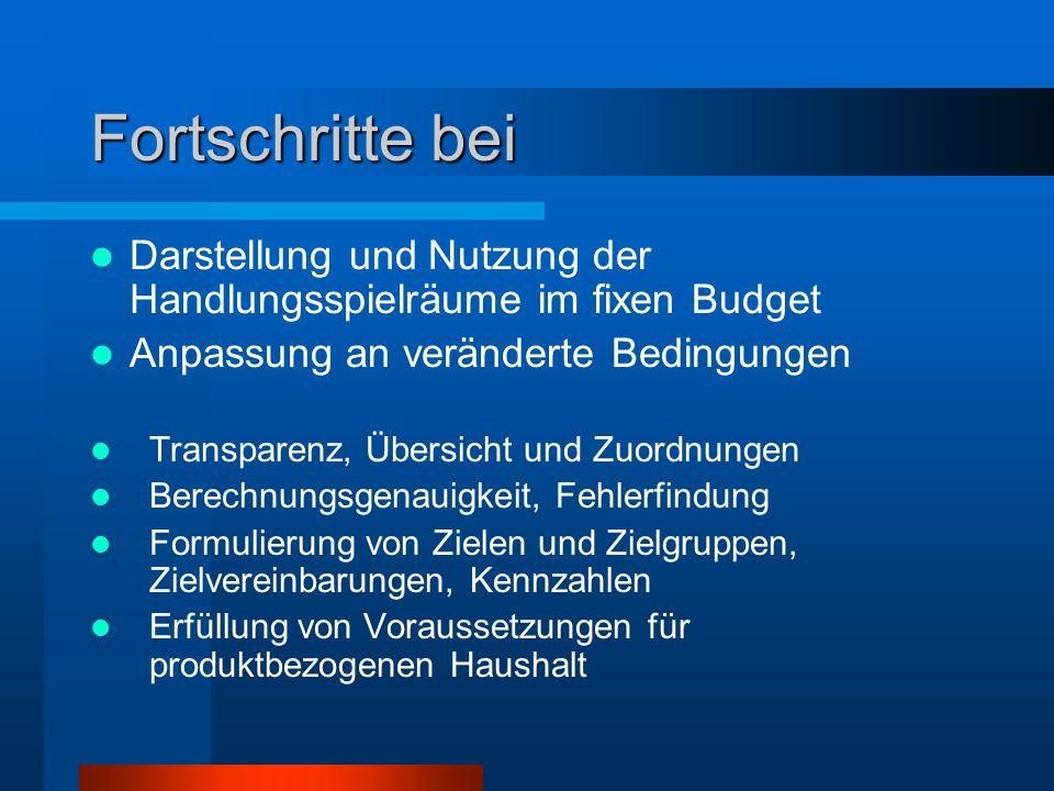Fortschritte bei Darstellung und Nutzung der Handlungsspielräume im fixen Budget Anpassung an veränderte Bedingungen Transparenz, Übersicht und Zuordn