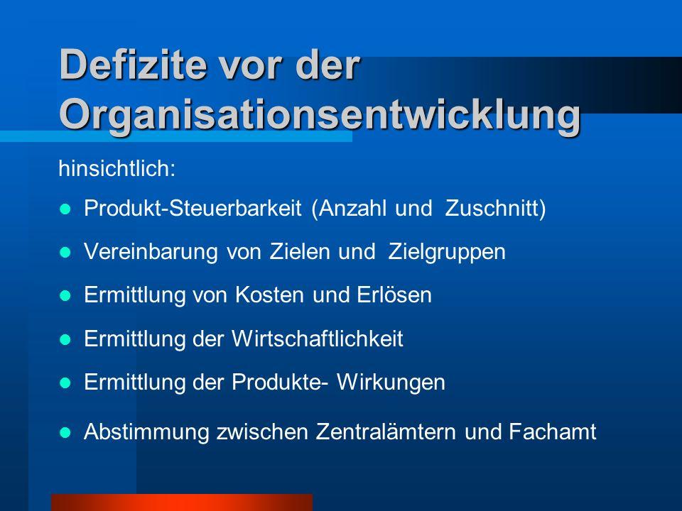 Defizite vor der Organisationsentwicklung hinsichtlich: Produkt-Steuerbarkeit (Anzahl und Zuschnitt) Vereinbarung von Zielen und Zielgruppen Ermittlun