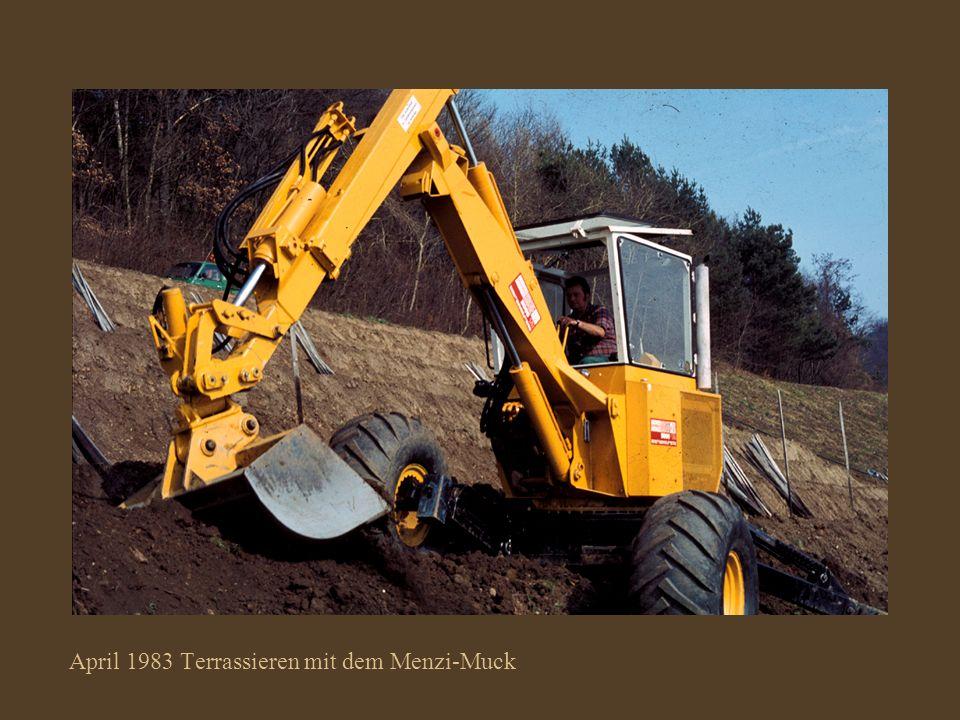 April 1983 Der wendige Menzi–Muck beim Anlegen der neuen Terrassen