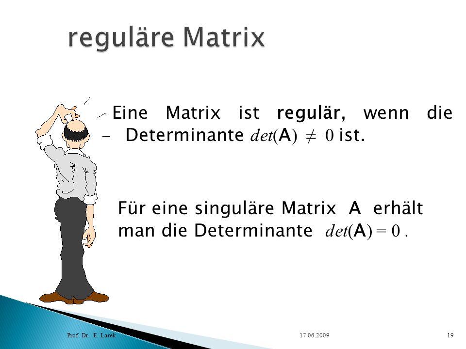Eine Matrix ist regulär, wenn die Determinante det( A ) 0 ist. Prof. Dr. E. Larek17.06.200919 Für eine singuläre Matrix A erhält man die Determinante