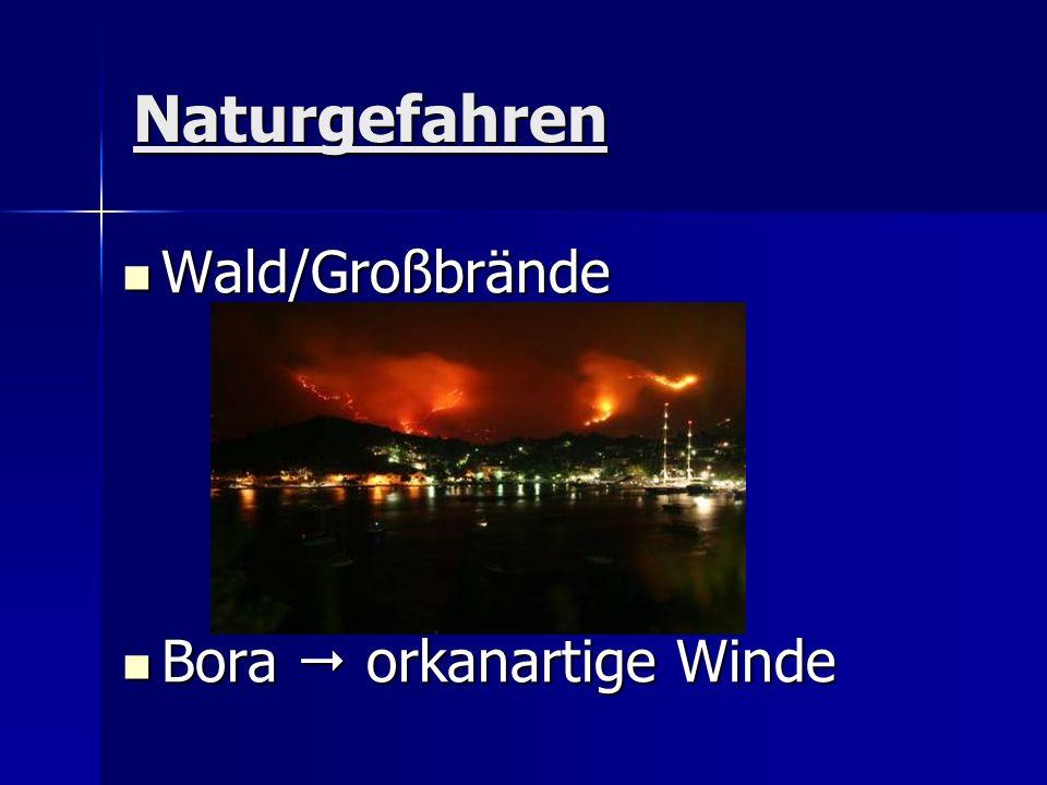 Naturgefahren Wald/Großbrände Wald/Großbrände Bora orkanartige Winde Bora orkanartige Winde