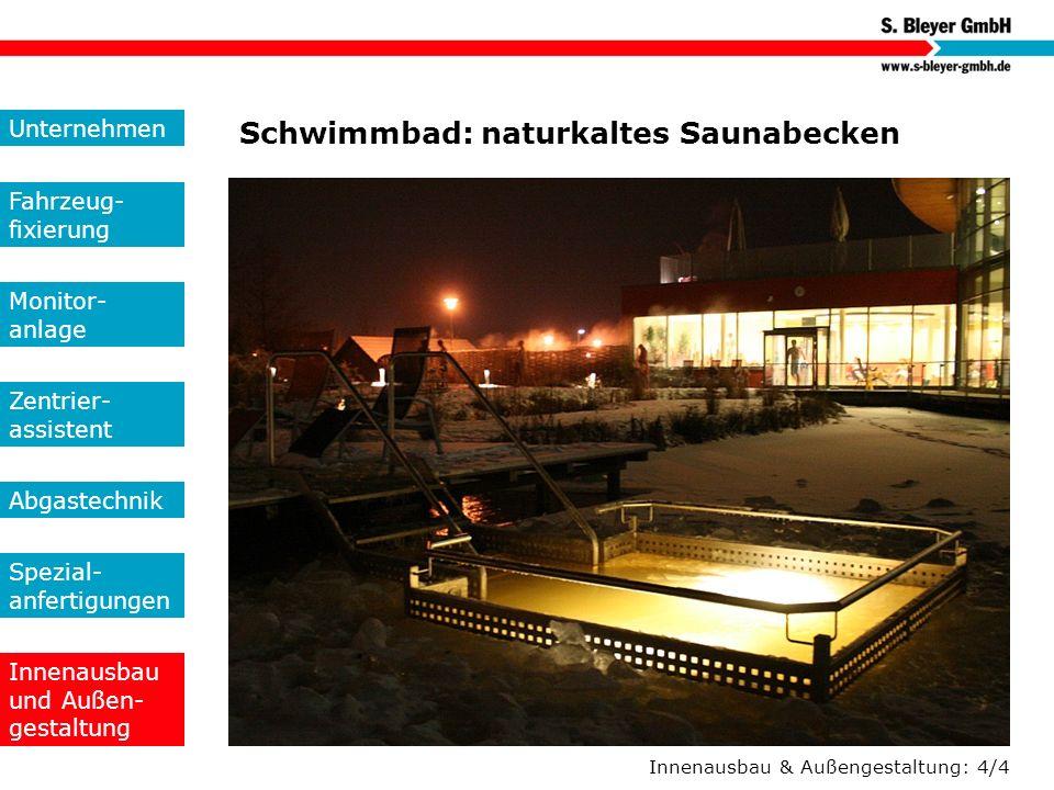 Innenausbau & Außengestaltung: 4/4 Schwimmbad: naturkaltes Saunabecken Unternehmen Fahrzeug- fixierung Monitor- anlage Zentrier- assistent Abgastechni