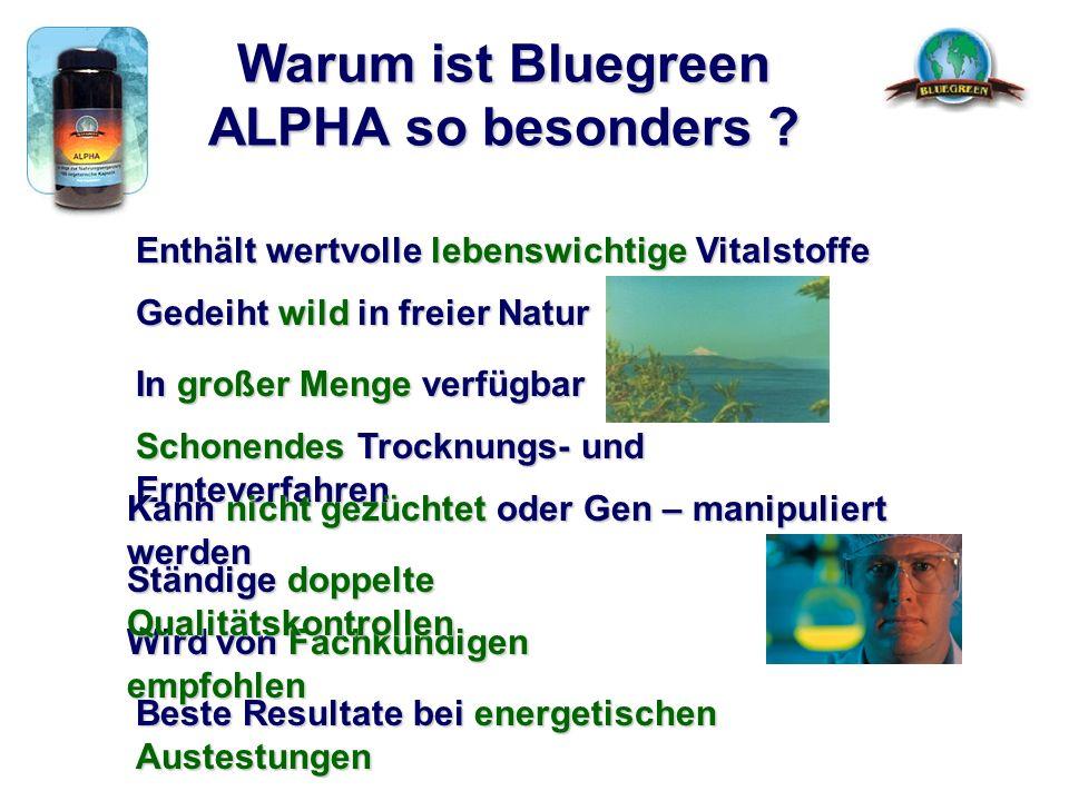 Warum ist Bluegreen ALPHA so besonders ? Enthält wertvolle lebenswichtige Vitalstoffe Gedeiht wild in freier Natur In großer Menge verfügbar Wird von
