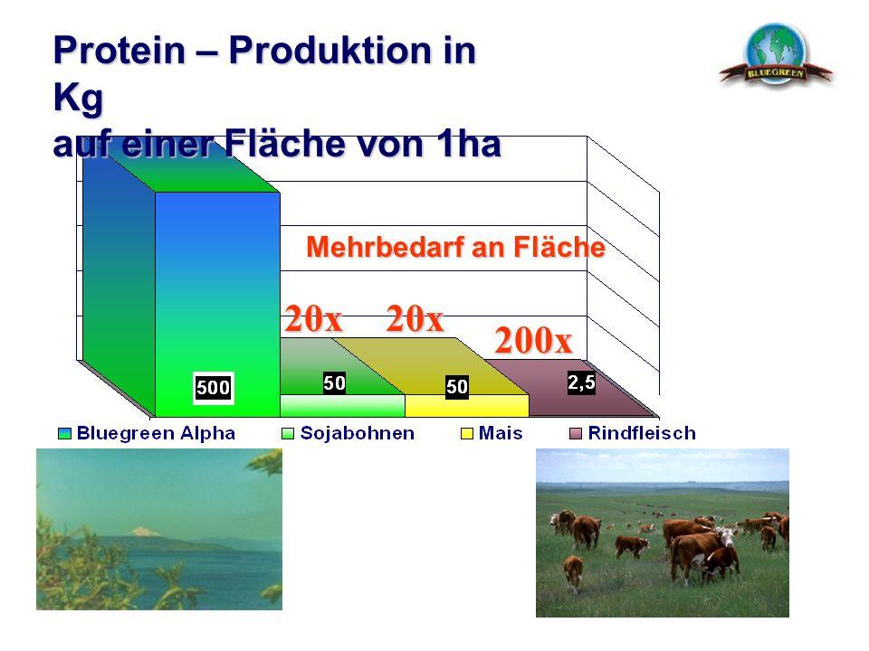 Protein – Produktion in Kg auf einer Fläche von 1ha 20x20x 200x Mehrbedarf an Fläche