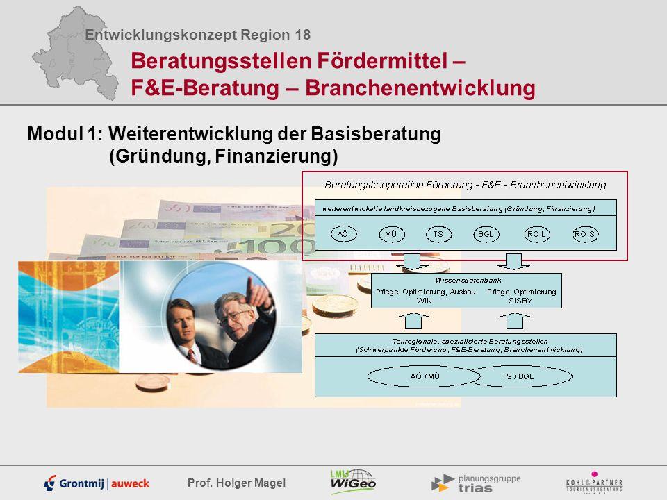 Entwicklungskonzept Region 18 Prof. Holger Magel Modul 1: Weiterentwicklung der Basisberatung (Gründung, Finanzierung) Beratungsstellen Fördermittel –