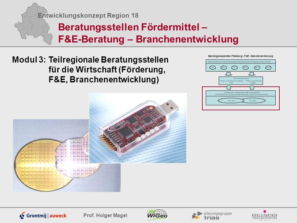 Entwicklungskonzept Region 18 Prof. Holger Magel Beratungsstellen Fördermittel – F&E-Beratung – Branchenentwicklung Modul 3: Teilregionale Beratungsst