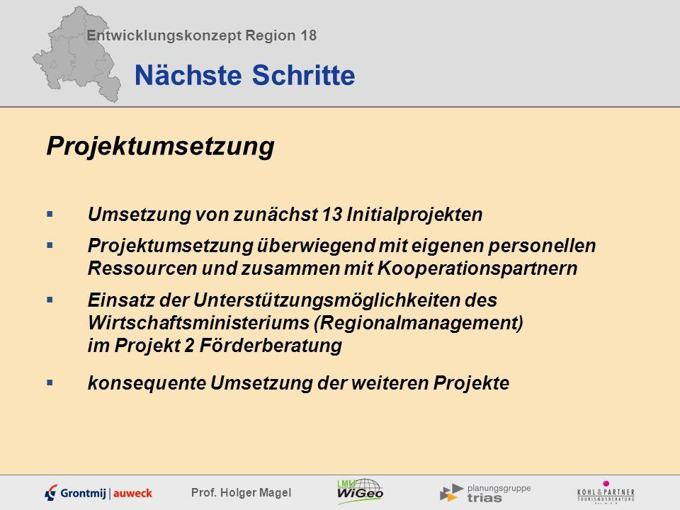 Entwicklungskonzept Region 18 Prof. Holger Magel Nächste Schritte Projektumsetzung Umsetzung von zunächst 13 Initialprojekten Projektumsetzung überwie