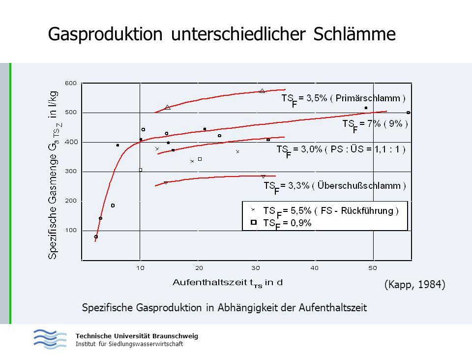 Technische Universität Braunschweig Institut für Siedlungswasserwirtschaft Gasproduktion unterschiedlicher Schlämme Spezifische Gasproduktion in Abhän