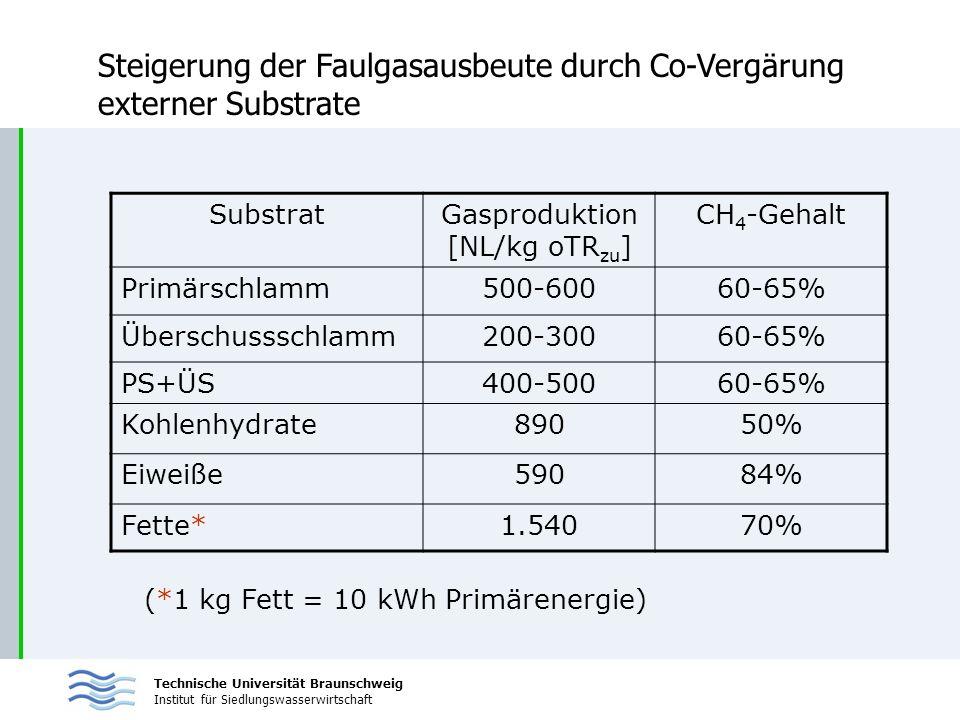 Technische Universität Braunschweig Institut für Siedlungswasserwirtschaft Steigerung der Faulgasausbeute durch Co-Vergärung externer Substrate Substr