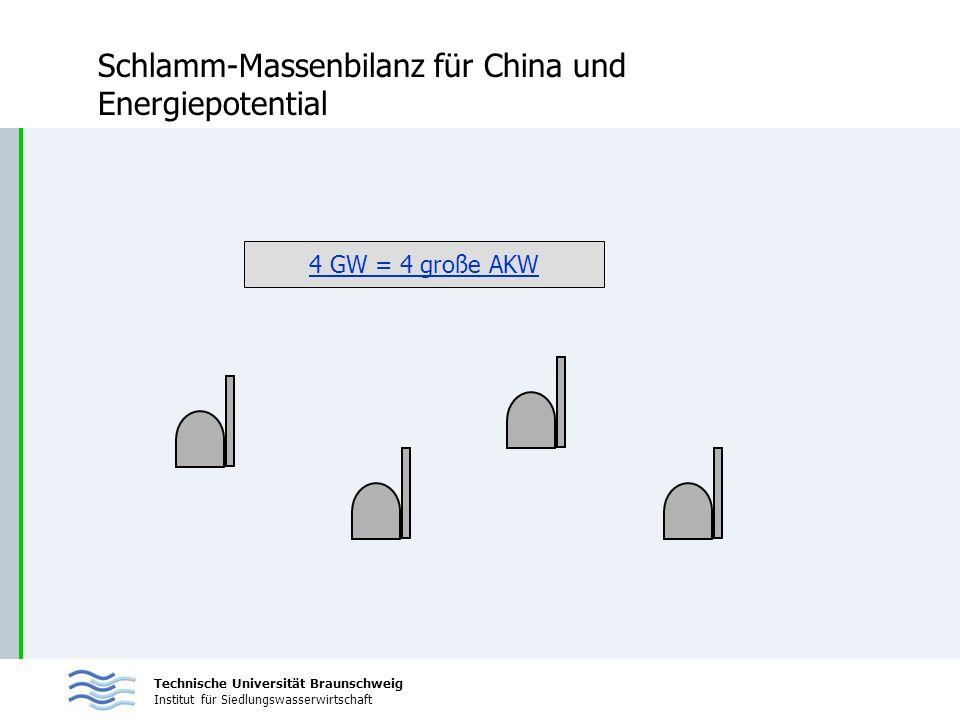 Technische Universität Braunschweig Institut für Siedlungswasserwirtschaft Schlamm-Massenbilanz für China und Energiepotential 4 GW = 4 große AKW