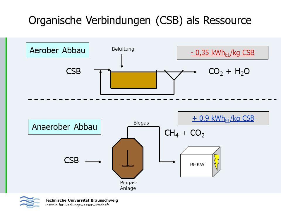 Technische Universität Braunschweig Institut für Siedlungswasserwirtschaft Organische Verbindungen (CSB) als Ressource + 0,9 kWh EL /kg CSB Anaerober