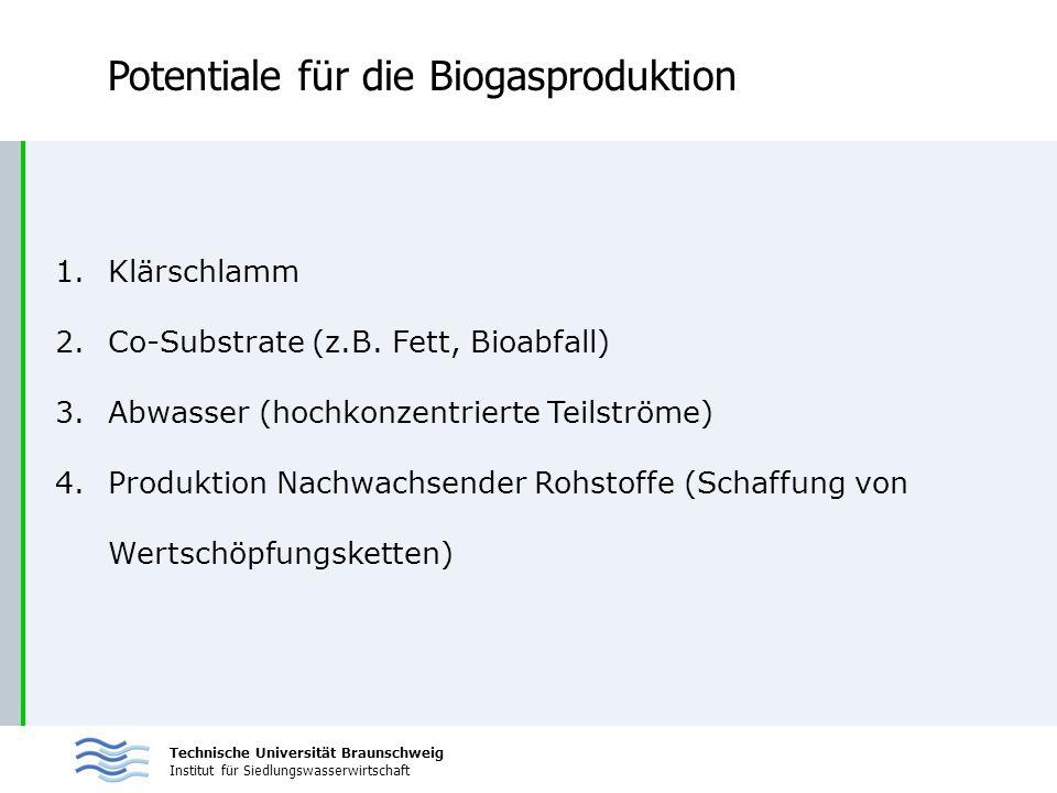 Technische Universität Braunschweig Institut für Siedlungswasserwirtschaft Potentiale für die Biogasproduktion 1.Klärschlamm 2.Co-Substrate (z.B. Fett