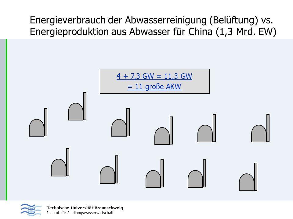 Technische Universität Braunschweig Institut für Siedlungswasserwirtschaft Energieverbrauch der Abwasserreinigung (Belüftung) vs. Energieproduktion au