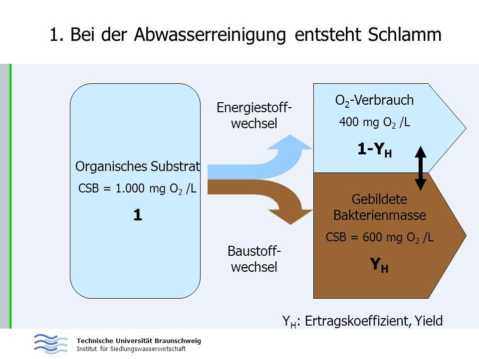Technische Universität Braunschweig Institut für Siedlungswasserwirtschaft 1. Bei der Abwasserreinigung entsteht Schlamm Organisches Substrat CSB = 1.