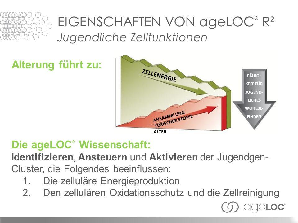Die ageLOC ® Wissenschaft: Identifizieren, Ansteuern und Aktivieren der Jugendgen- Cluster, die Folgendes beeinflussen: 1.