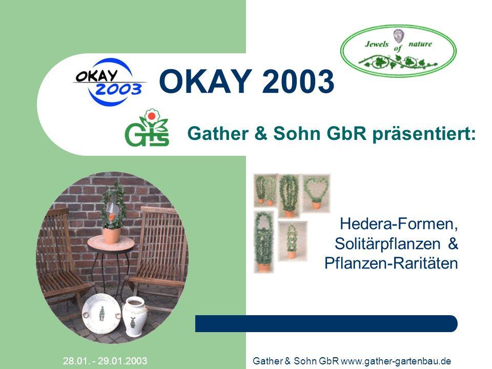 28.01. - 29.01.2003Gather & Sohn GbR www.gather-gartenbau.de OKAY 2003 Gather & Sohn GbR präsentiert: Hedera-Formen, Solitärpflanzen & Pflanzen-Raritä