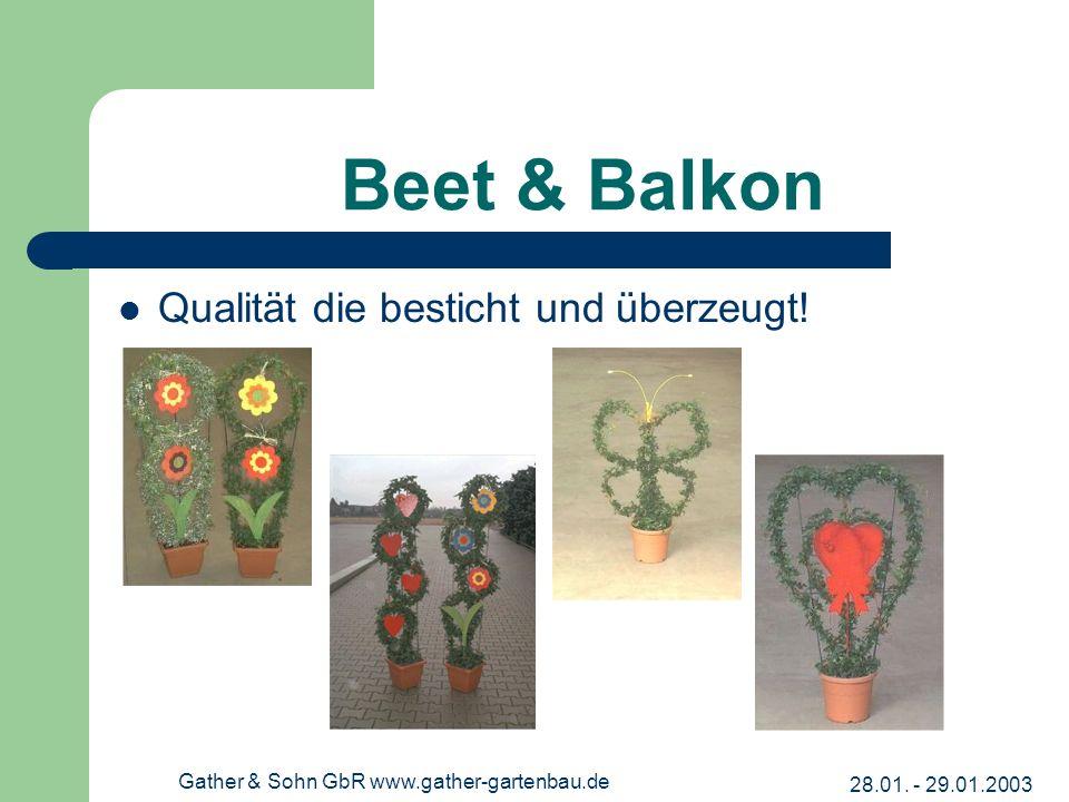 28.01. - 29.01.2003 Gather & Sohn GbR www.gather-gartenbau.de Beet & Balkon Qualität die besticht und überzeugt!