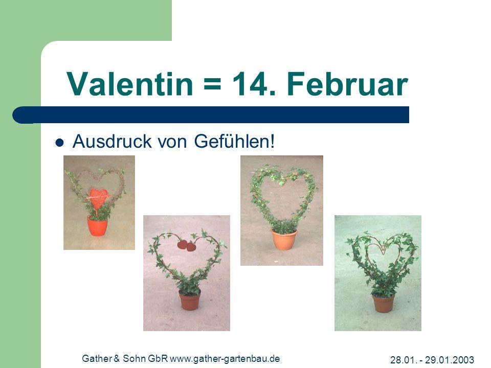 28.01. - 29.01.2003 Gather & Sohn GbR www.gather-gartenbau.de Valentin = 14. Februar Ausdruck von Gefühlen!