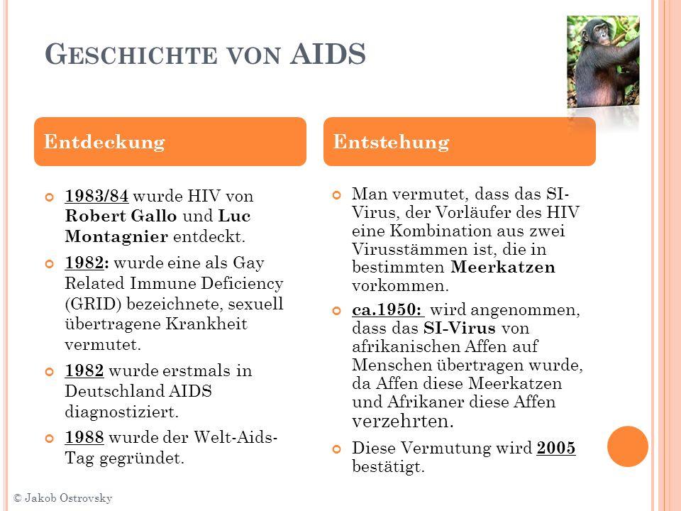 G ESCHICHTE VON AIDS Man vermutet, dass das SI- Virus, der Vorläufer des HIV eine Kombination aus zwei Virusstämmen ist, die in bestimmten Meerkatzen