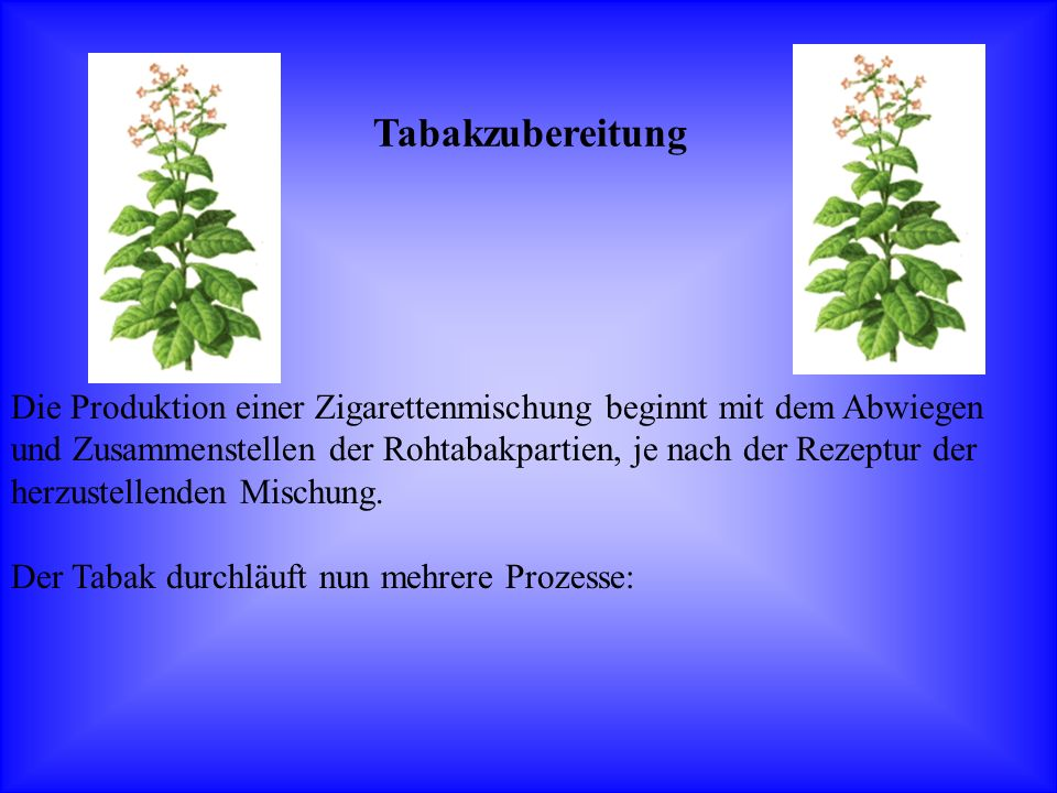 Die Produktion einer Zigarettenmischung beginnt mit dem Abwiegen und Zusammenstellen der Rohtabakpartien, je nach der Rezeptur der herzustellenden Mis