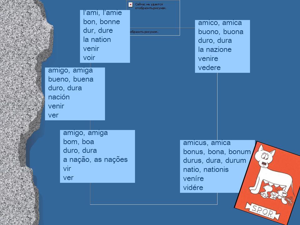 Fremdwörtern wissenschaftlichen Fachwörtern Latein erleichtert den Umgang mit zahllosen Fremdwörtern und den Zugang zu wissenschaftlichen Fachwörtern.