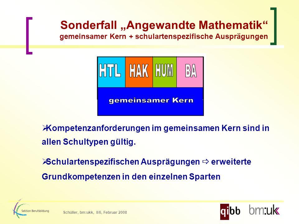 Schüller, bm:ukk, II/6, Februar 2008 Kompetenzanforderungen im gemeinsamen Kern sind in allen Schultypen gültig.